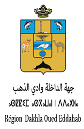 Dakhla_Oued_Eddahab_Regionn Aousserd, Conference ENCG Dakhla, Sahara, Morocco, Energy Economics between Deserts and Oceans. Morocco, Sahara desert economy development, Aailal Elouali